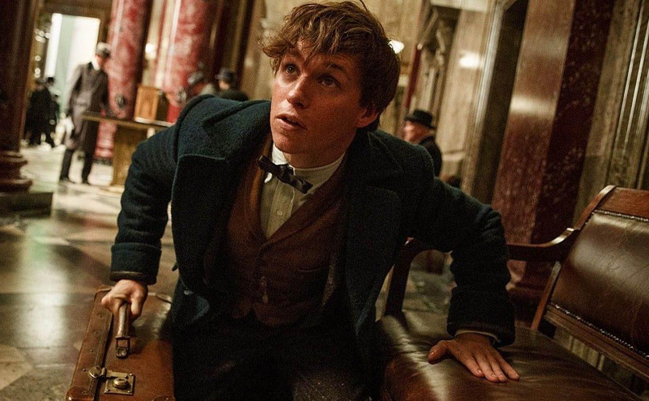 ¿Cuándo apareció Newt Scamander en la saga Harry Potter?