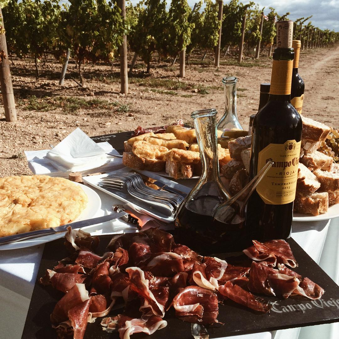En Búho degustamos gastronomía de calidad en los viñedos de Campo Viejo
